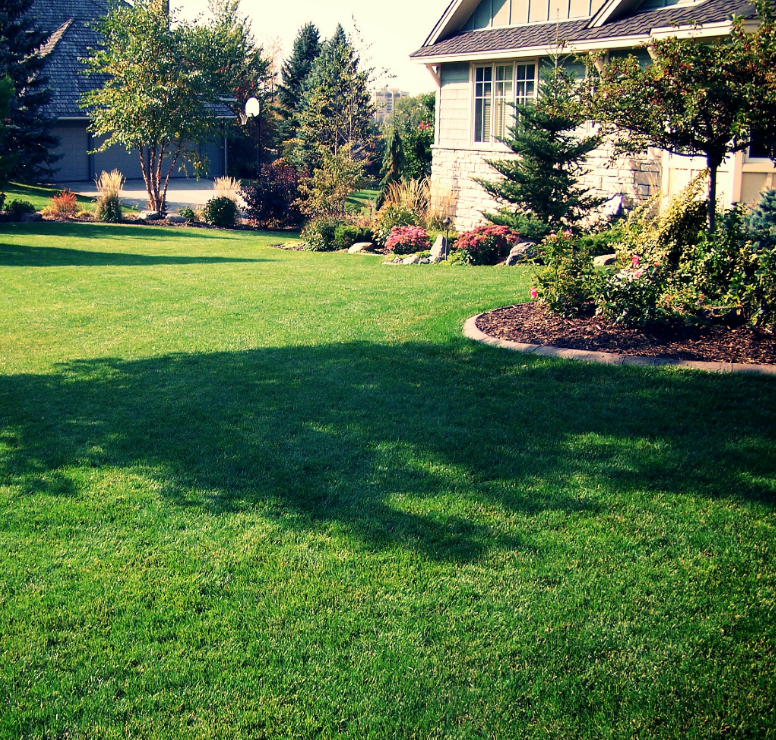 Lawn Care In The Fall