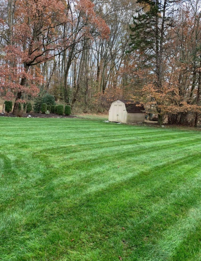 Spring Lawn Care Sucess