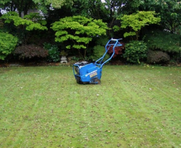 Aerate your lawn