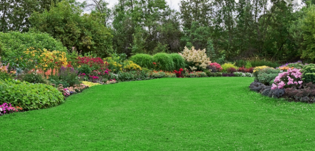 Lawn & Landscape Tips For The Winter
