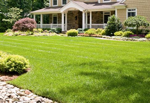 Organic Lawn Care works