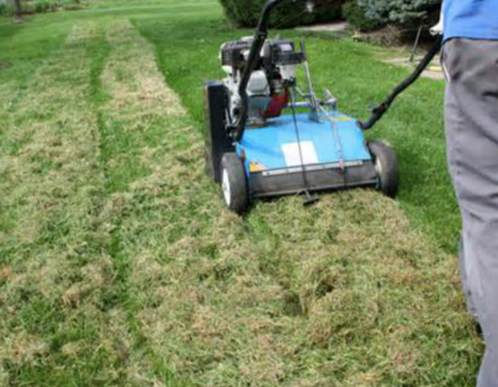 Helpful Spring Lawn Care Tips