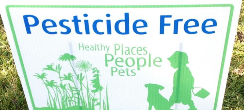 Say no to pesticides